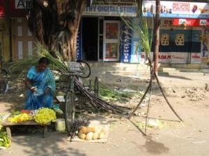 Woman selling flowers and sugarcane in Bangalore
